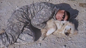 Ryan Anderson spent 365 days in Afghanistan with a Golden Retriever named Freddie by his side. The two shared a tight bond that continued for years after when Anderson adopted Freddie. At almost 14 years old it was finally time for Anderson to say goodbye to his friend on Wednesday afternoon.  Freddie served three tours of duty under the British army before serving his fourth tour with Anderson and the United States in Afghanistan in 2009.  Thank you for your service, Freddie, and rest in peace.   Read more here: http://bit.ly/10Ccqj0